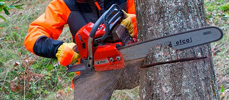 How to clean your chainsaw