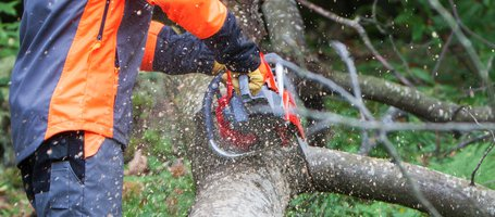 New MT 6300 chainsaw